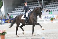 Anky van Grunsven Salinero landenwedstrijd CHIO Rotterdam
