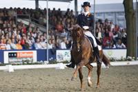 Hans Peter Minderhoud, Olympische Spelen, Grand Prix, Landenwedstrijd