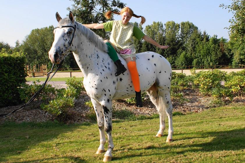 nl Langkous Horses Pipi Met Stippie Nrps • Hengst 3Ljc5Aq4R