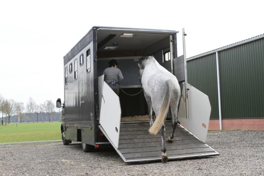 Tweepaardsvrachtwagen bijna nooit geschikt voor twee paarden ...
