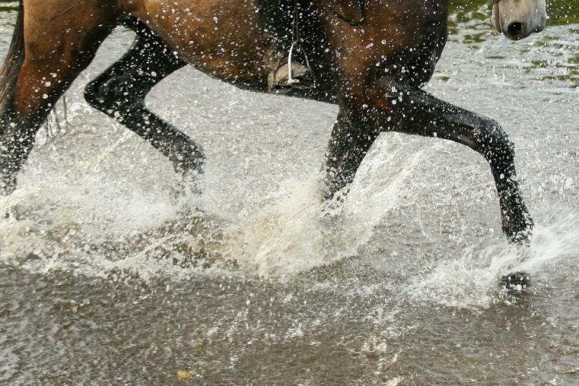 placeholder water, recreatief