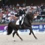 Foto De Paardenkrant