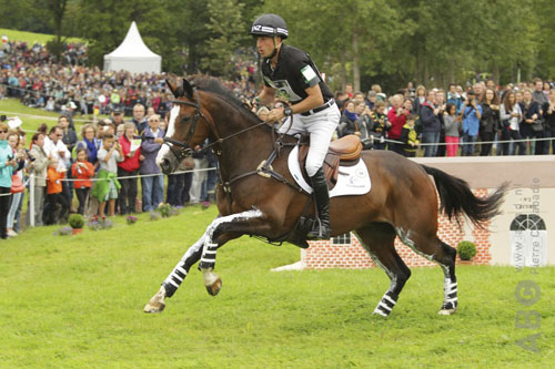 Tim Price wint met Karandasj-zoon Wesko ERM Arville - Horses.nl - Horses.nl