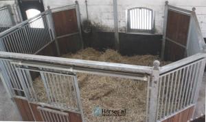 De kraamstal is gereed. Foto: Jacquelien van Tartwijk / Paardenkrant-Horses.nl