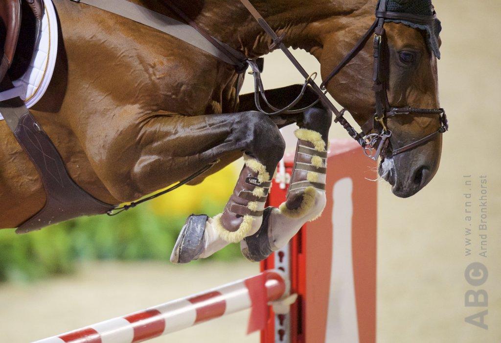 GMB Luttenberg: Roos Hansman opnieuw aan kop - Horses.nl