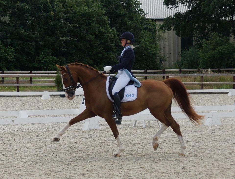 Anouk Noordman 'op trensje' concurrent van zichzelf in Vlagtwedde - Horses.nl - Horses.nl