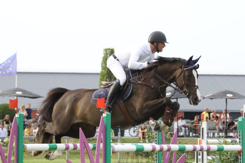 """Résultat de recherche d'images pour """"PMH POLLYANNA + JUMPING HORSE"""""""