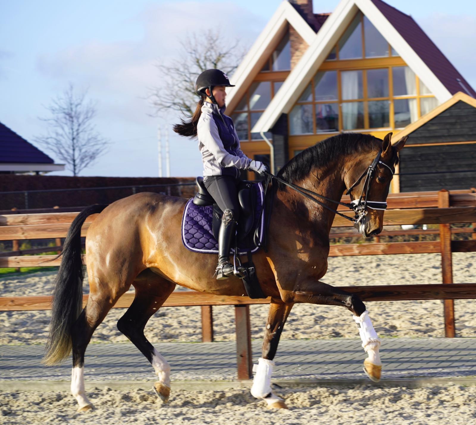 Shanna Baars en Farzana met PR naar eerste internationale zege - Horses.nl - Horses.nl