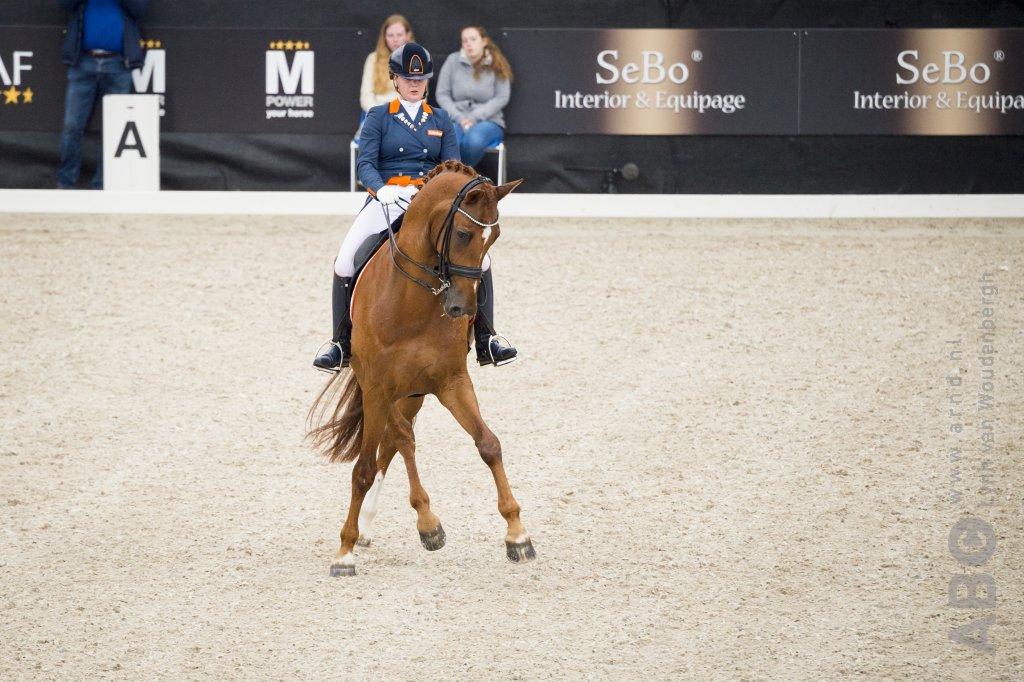 Vijfde oranje lint voor Jeanine Nieuwenhuis - Horses.nl - Horses.nl