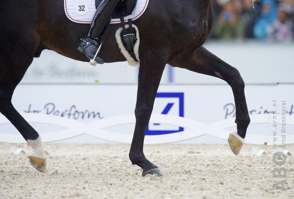 Roy van den Heuvel dagtopper in Velddriel met Romeo - Horses.nl