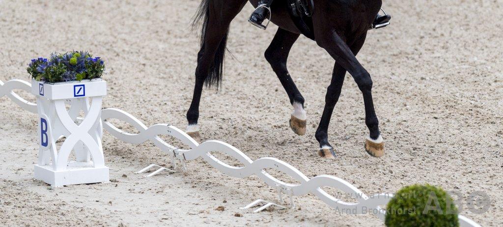 Jolanda Harkema-Peters en Caruso winnen in Snelrewaard - Horses.nl - Horses.nl