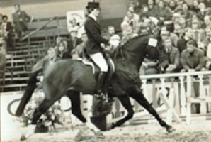 Golden Oldies: Ulft - Horses.nl - Horses.nl